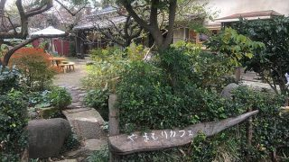 母めしを庭つき古民家でゆったり食べれる『やまもりカフェ』 国立